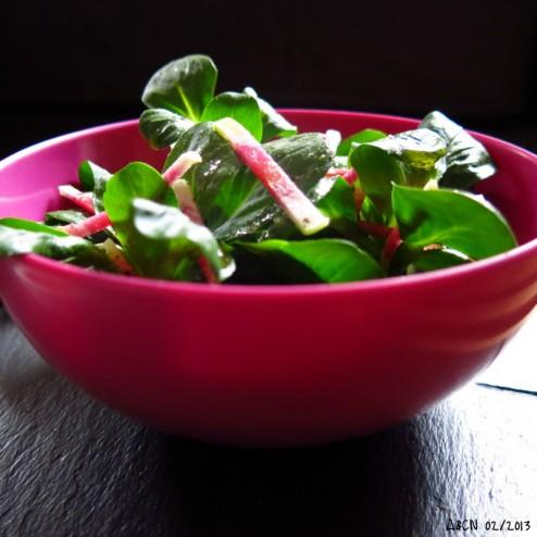 midi solo salade mache radis rose