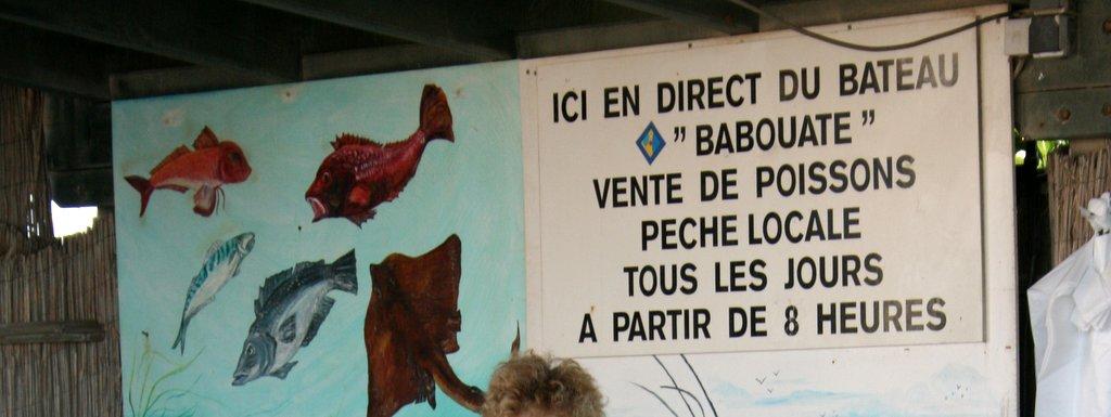 Pêche côtière Barcarès