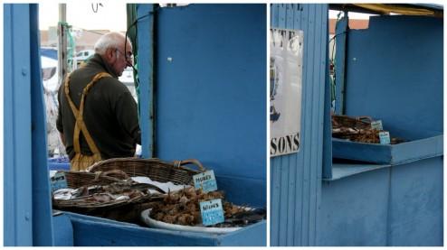 Retour de pêche en Mediterrannée